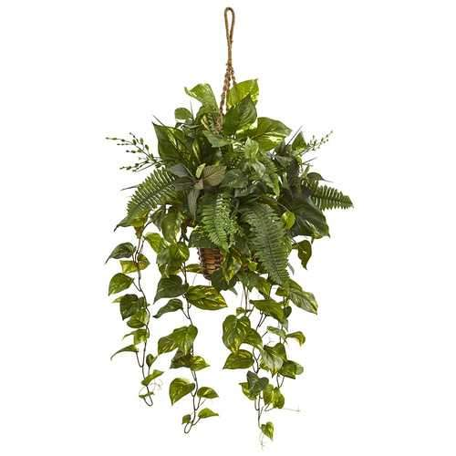 Mixed Pothos and Boston Fern in Hanging Basket Silk Plant
