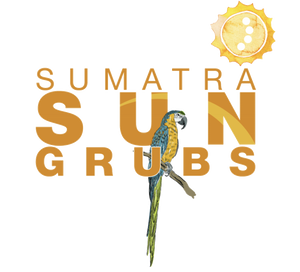 sungrubs.com