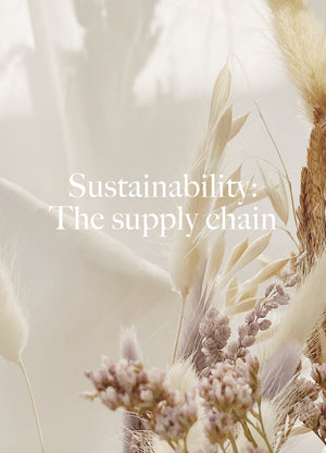 Stories-Sustainability: The Supply Chain - Dora Larsen | Colourful Lingerie