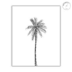 centered black palm watercolor illustration