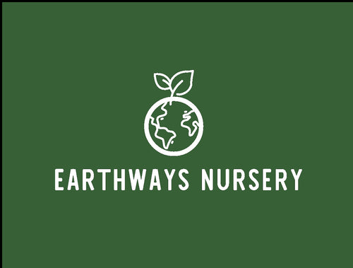 Earthways Nursery