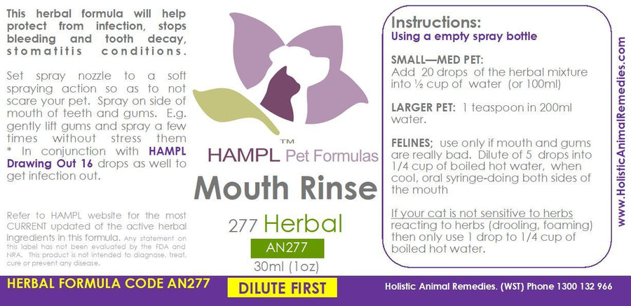 AN277 - Oral Mouth Rinse (gum infection, bleeding stomatitis)  in cat, dog, or other species