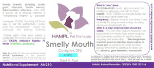 AN290 - Smelly mouth - infection in gum, teeth, abscess.