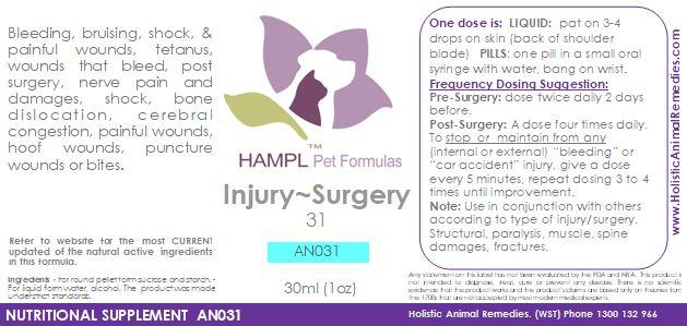 AN031 - Surgery Healing - bleeds, injury, bruising, pre-post surgery, sterilisation ease -  for all species