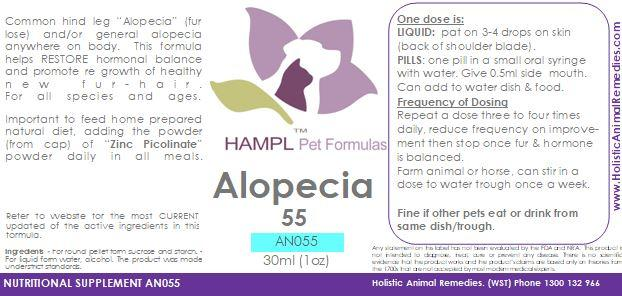 AN055 - Fur - Alopecia, Hormonal (loss of fur)
