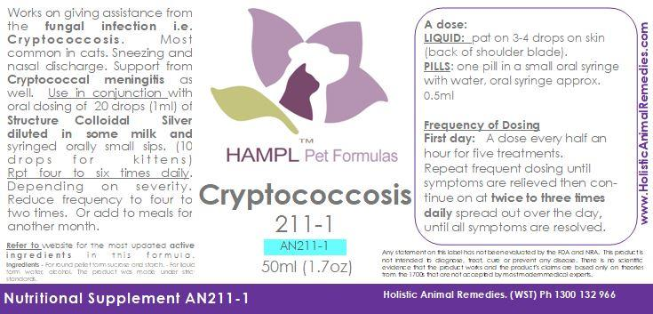 AN211 - Cryptococcosis - Cryptococcal, Mucormycosis fungal (meningitis brain, lung, nose, mouth, bone) cat, dog all species (SOLUTION)