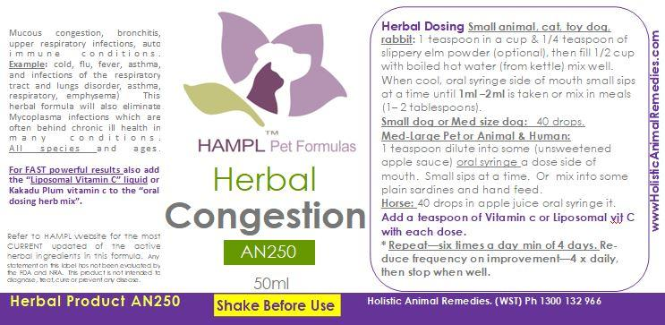 AN250 - Herbal Congestion - viral, bacterial infection (bronchitis, cold, flu, mucous congestion) for all species