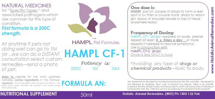 AN245 - Cancer - Hemangiosarcoma, Histiocytic or Benign (hemangioma) in your dog or cat  - all natural formulas