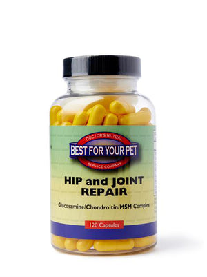 Hip and Joint Repair