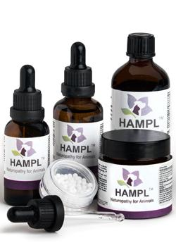Herbal Repair Cream (Hypcal) for healing skin wounds - once cleared of pus.