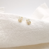 Entrapped Gold Solid Opal Earring Studs