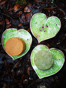 Kawakawa and Mini Monstera ceramic soap dishes