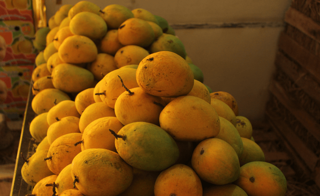 Alphonso Mango nutritional value [Part 2]