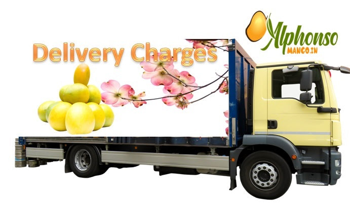 Alphonso Mango Delivery Charges