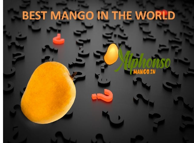 Best Mango in the world,Best Mangoes in the world,