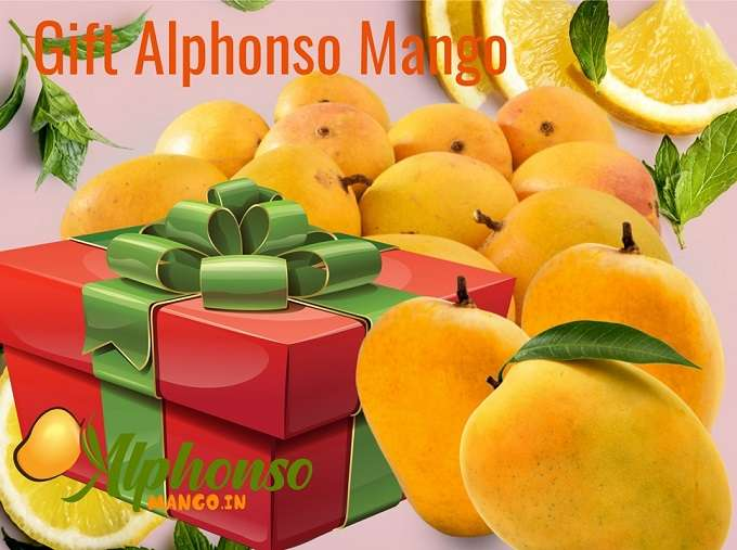 Gift Alphonso Mango in India, Alphonso Mangoes Corporate Gift,