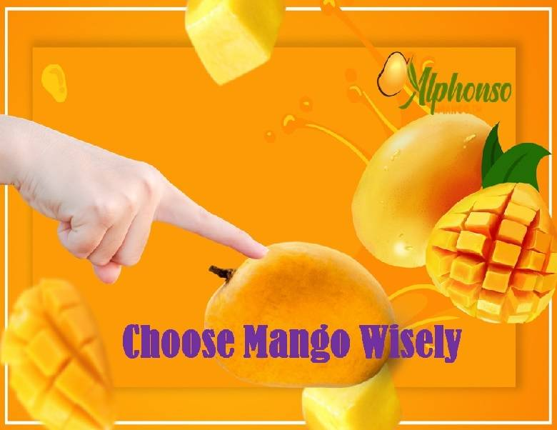 How to Choose Alphonso Mango - do's and donts of Alphonso mango