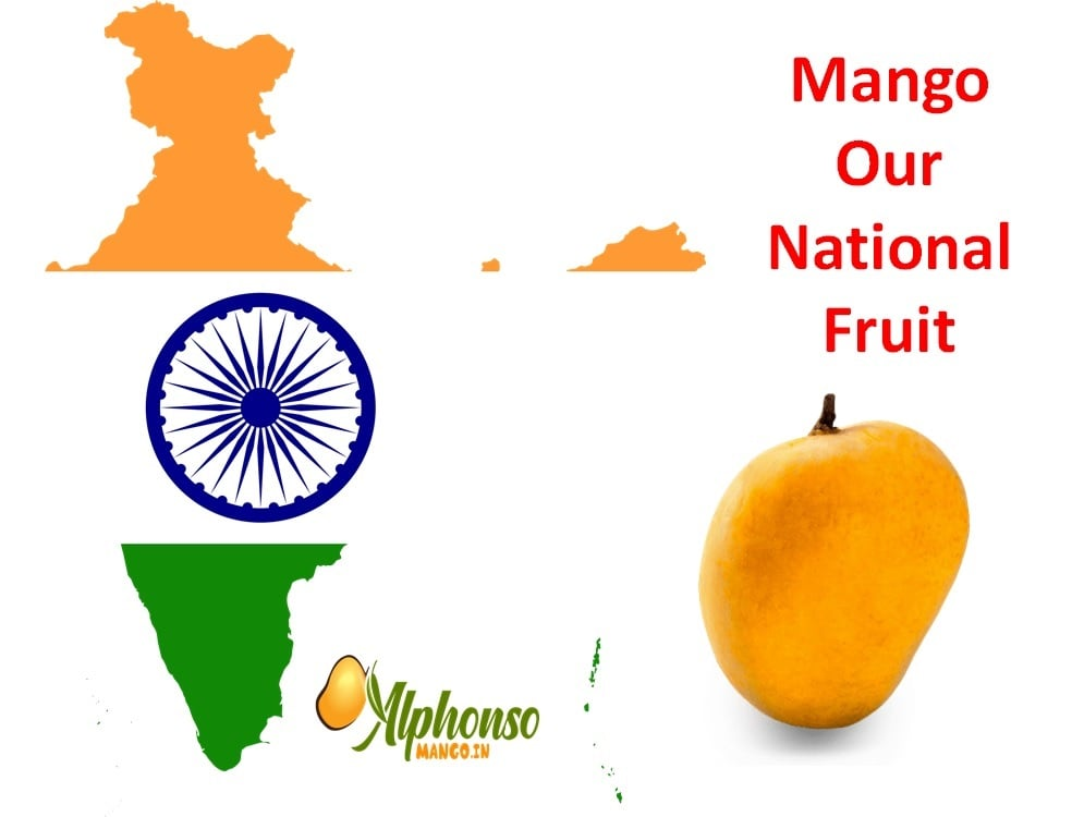 Mango our National Fruit
