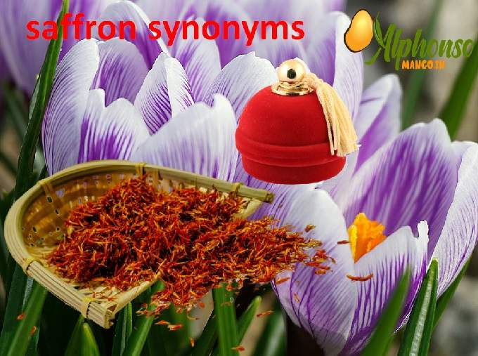 Saffron Synonyms