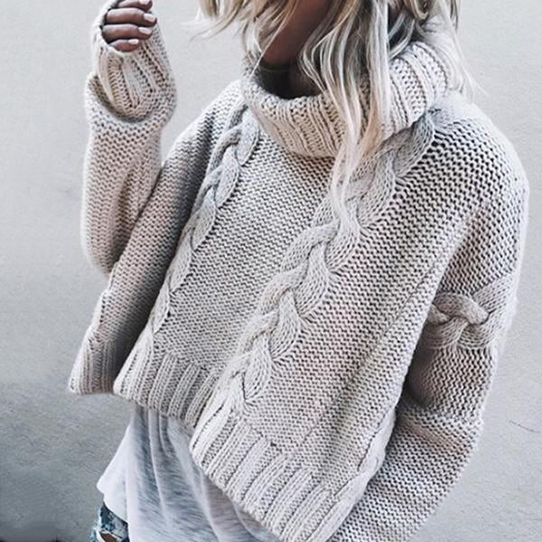 Turtle Neck  Plain  Basic Sweaters