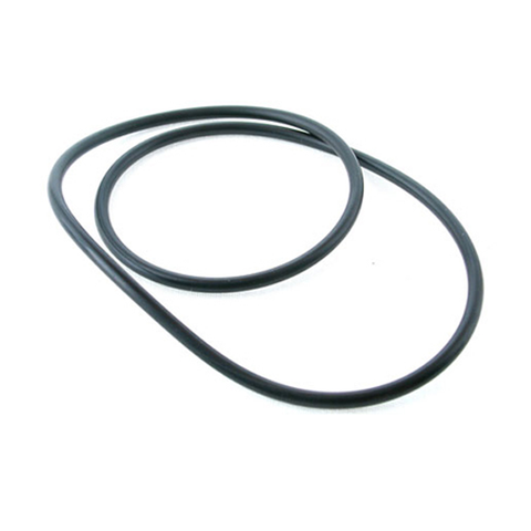 Filtrite O ring for SK950 vacuum plate - O-47