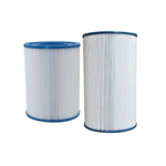 EC1750 Davey / Clearflow 175 Filter Cartridge
