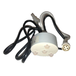 Rising Dragon 4 LED Master Spa Light 4 Wire