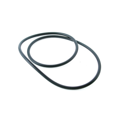 Monster pump body o-ring