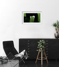 Laden Sie das Bild in den Galerie-Viewer, EC 147 - Black and Green