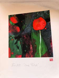 EC 215 - 'The Tulip'