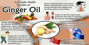 Ancient Ginger Root King Oil