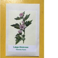 Load image into Gallery viewer, Læge-stokrose