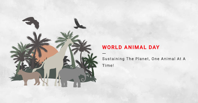 World Animal Day Sustaining The Planet, One Animal At A Time!