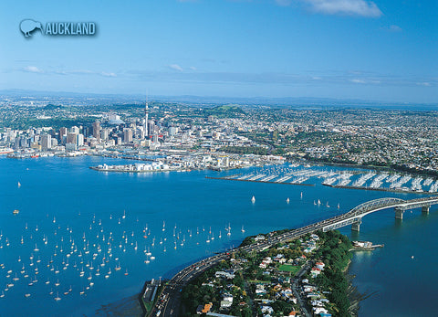 LAU003 - Auckland And Devonport - Large Postcard