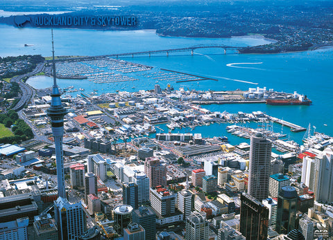 LAU007 - Auckland City & Skytower - Large Postcard - Postcards NZ Ltd