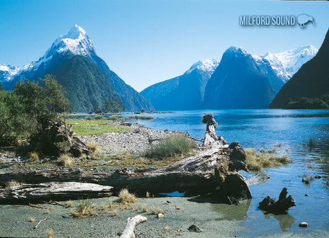 LFI063 - Milford Sound - Large Postcard - Postcards NZ Ltd