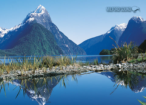 LFI065 - Reflections, Milford Sound - Large Postcard