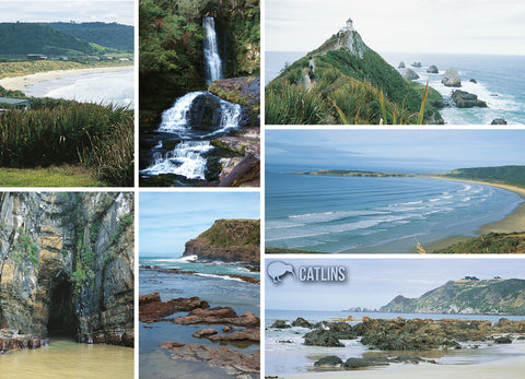 LOT121 - Catlins Multi - Large Postcard