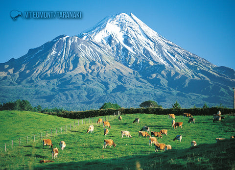 LTA154 - Mt Taranaki/Egmont - Large Postcard - Postcards NZ Ltd