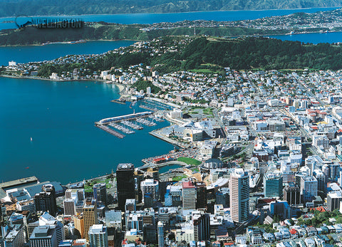 LWG187 - Wellington Aerial - Large Postcard