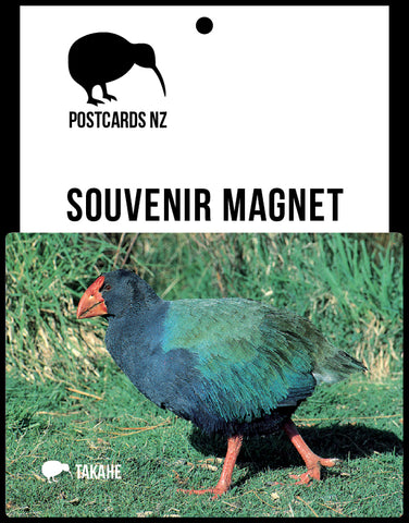 MFI154 - Takahe - Magnet - Postcards NZ Ltd