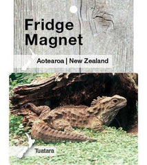 MGI110 - Tuatara - Magnet - Postcards NZ Ltd