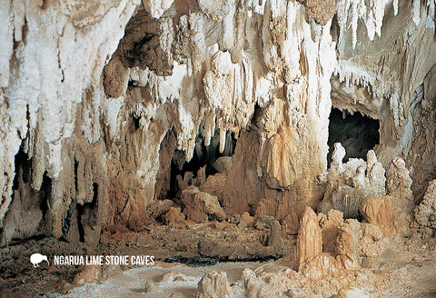SNE738 - Ngarua Lime Stone Cave - Small Postcard - Postcards NZ Ltd