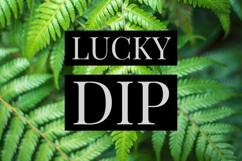 Lucky Dip 10 Postcard Set - Postcards NZ Ltd