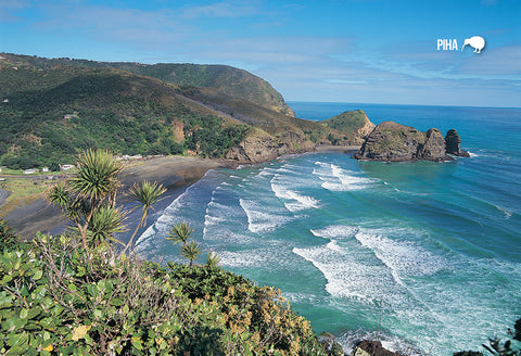 SAU118 - Piha Beach From Lion Rock - Small Postcard - Postcards NZ Ltd