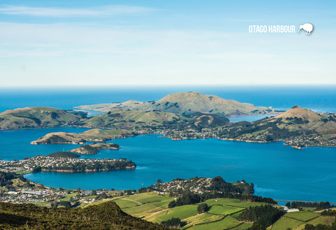 SDN425 - Otago Harbour - Small Postcard
