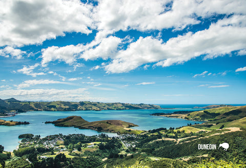 SDN432 - Otago Harbour - Small Postcard