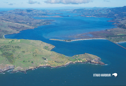 SDN461 - Otago Harbour Aerial - Small Postcard