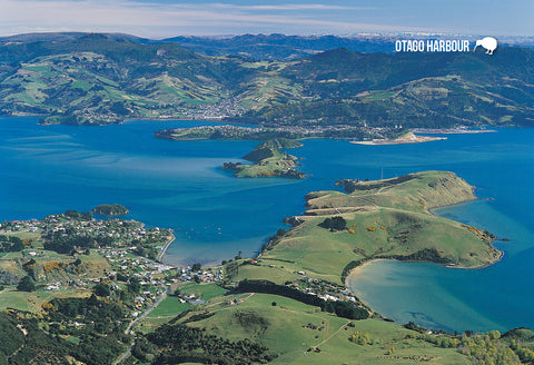 SDN462 - Aerial Otago Harbour - Small Postcard