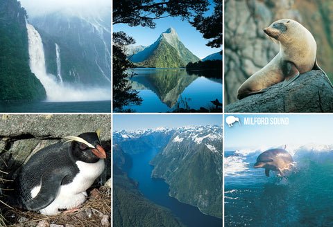SFI61 - Milford Sound Multi - Small Postcard